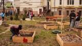 Grădina din curtea școlii – 1 martie 2014