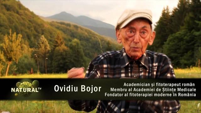 Ovidiu Bojor   Apa