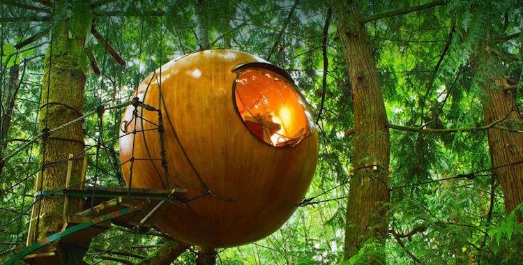 19-round-tree-house-cabin-1