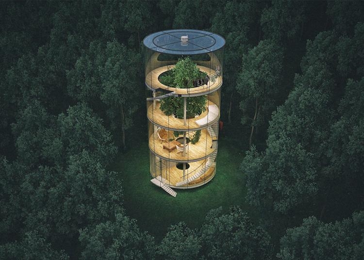 7-a-masow-design-studio-tree-in-the-house-1